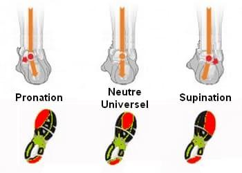 Types d'appuis du pied
